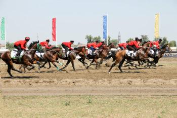 В скачках приняли участие 20 лучших казаков-наездников из районных обществ.